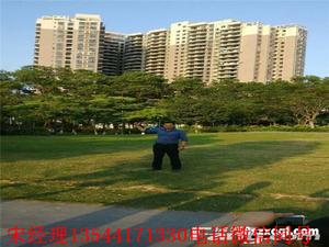 深圳石岩湖景小产权房名星花园3栋花园11000起价 环境极好 看山 看湖