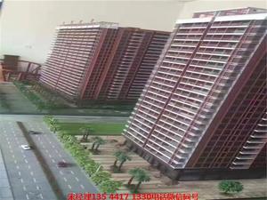 惠州28栋最好最大最便宜小产权房盛大开盘 金域花园3300起价分期5年 海景房